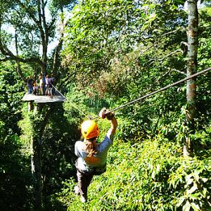 Canopy Zip- Line And Selva Trek Tour