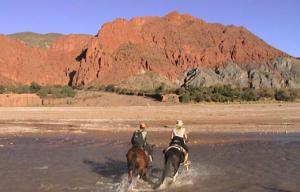 Horseback Riding Tour Packages